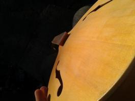 1 Layer of Varnish